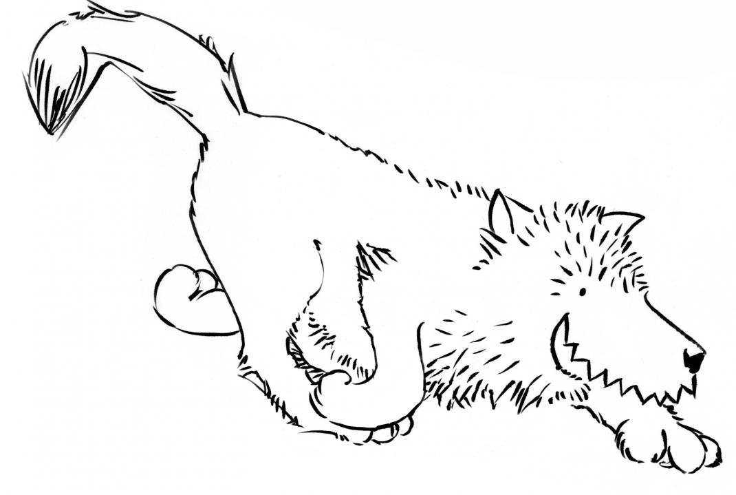 wolfi6